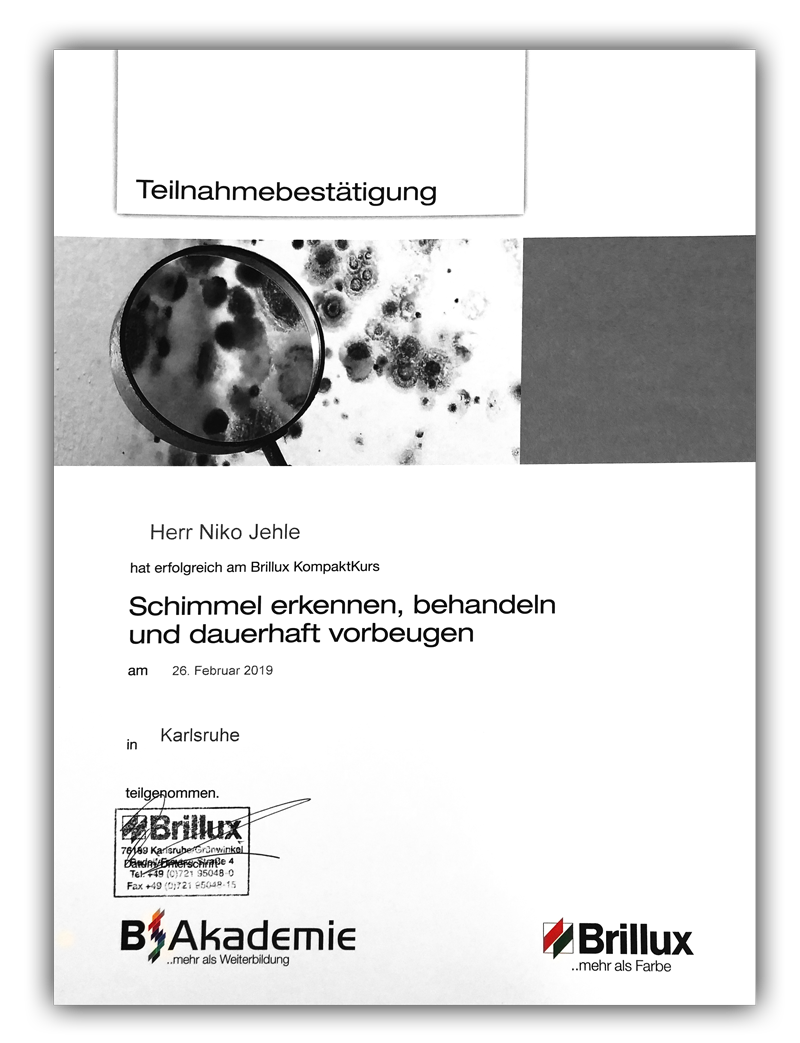 Zertifikat - Schimmel entfernen, behandeln und vorbeugen für Jehle GmbH, malerfachbetriebe aus Karlsruhe